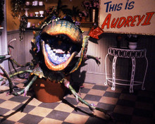 This is an image of Photograph & Poster of Little Shop of Horrors 286890