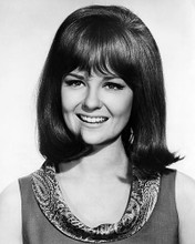 This is an image of Photograph & Poster of Shelley Fabares 196581