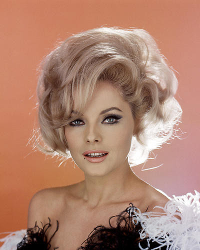 This is an image of Photograph & Poster of Virna Lisi 287274