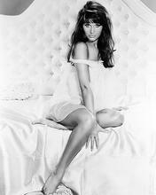This is an image of Photograph & Poster of Leslie Parrish 196694