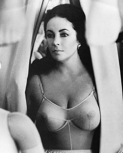 This is an image of Photograph & Poster of Elizabeth Taylor 196674