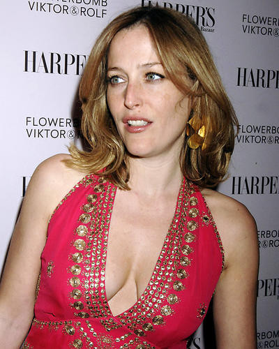 This is an image of Photograph & Poster of Gillian Anderson 287463
