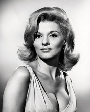 This is an image of Photograph & Poster of Nancy Kovack 196796