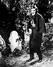 This is an image of Photograph & Poster of Dark Shadows 196800