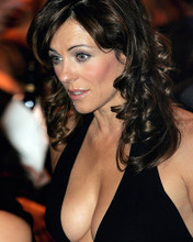 This is an image of Photograph & Poster of Elizabeth Hurley 288188