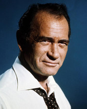This is an image of Photograph & Poster of Darren McGavin 288332