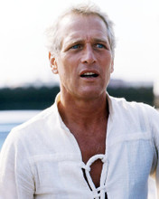 This is an image of Photograph & Poster of Paul Newman 288358