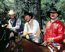 This is an image of Photograph & Poster of City Slickers 288299