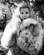 This is an image of Photograph & Poster of Ann-Margret 197201