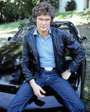 This is an image of Photograph & Poster of David Hasselhoff 288559