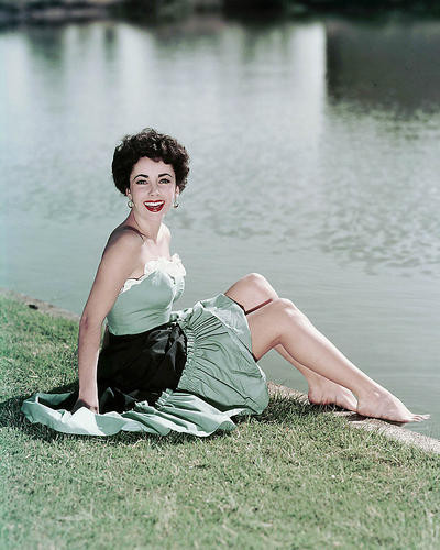 This is an image of Photograph & Poster of Elizabeth Taylor 288787