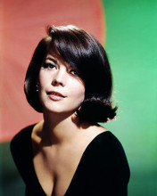 This is an image of Photograph & Poster of Natalie Wood 288988