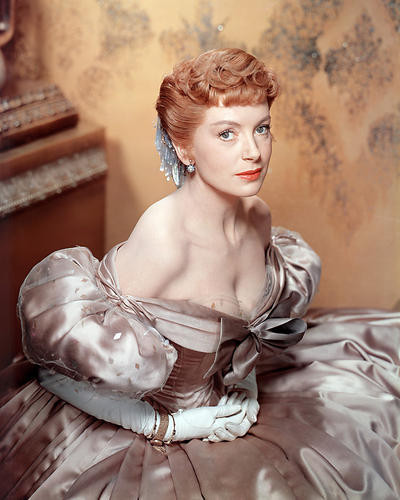 This is an image of Photograph & Poster of Deborah Kerr 288989