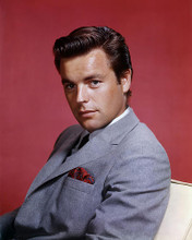 This is an image of Photograph & Poster of Robert Wagner 289088