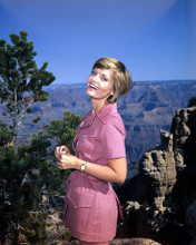 This is an image of Photograph & Poster of Florence Henderson 289208