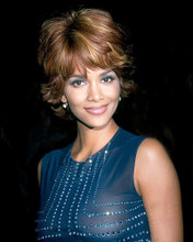 This is an image of Photograph & Poster of Halle Berry 289341