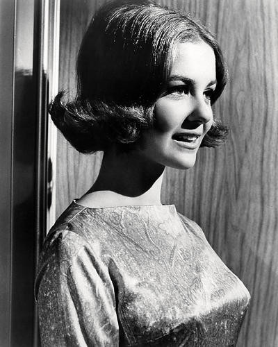 This is an image of Photograph & Poster of Shelley Fabares 198046