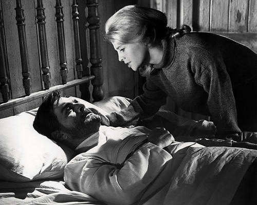 This is an image of Photograph & Poster of Doctor Zhivago 198359