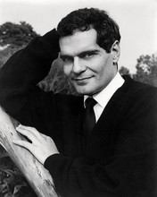 This is an image of Photograph & Poster of Omar Sharif 198370