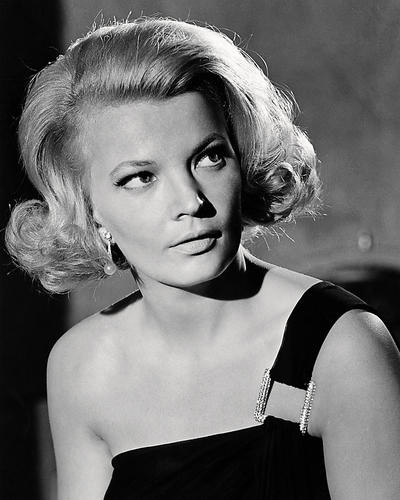 This is an image of Photograph & Poster of Gena Rowlands 198638