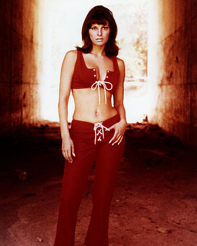 This is an image of Photograph & Poster of Raquel Welch 289987