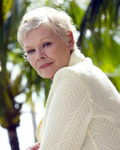 This is an image of Photograph & Poster of Judi Dench 290022