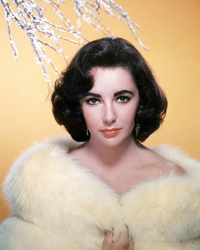 This is an image of Photograph & Poster of Elizabeth Taylor 289897