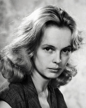 This is an image of Photograph & Poster of Sandy Dennis 198763