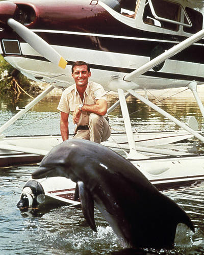 This is an image of Photograph & Poster of Flipper 289913