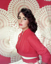 This is an image of Photograph & Poster of Elizabeth Taylor 289931