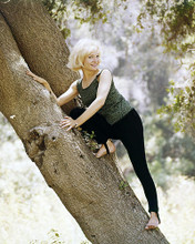 This is an image of Photograph & Poster of Susan Oliver 290092