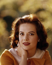This is an image of Photograph & Poster of Natalie Wood 290398