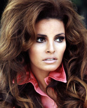 This is an image of Photograph & Poster of Raquel Welch 290424