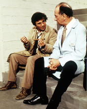 This is an image of Photograph & Poster of Peter Falk 290437