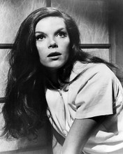 This is an image of Photograph & Poster of Samantha Eggar 199107
