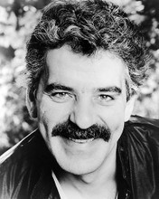 This is an image of Photograph & Poster of Dennis Farina 199198