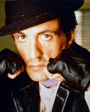 This is an image of 225466 Sylvester Stallone Photograph & Poster
