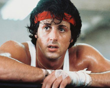 This is an image of 238978 Sylvester Stallone Photograph & Poster
