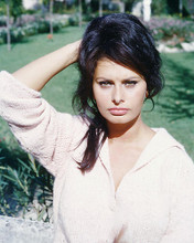 This is an image of 261268 Sophia Loren Photograph & Poster