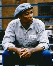 This is an image of 263111 Morgan Freeman Photograph & Poster
