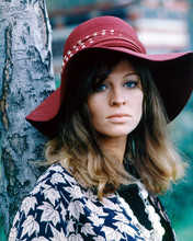 This is an image of 265475 Julie Christie Photograph & Poster
