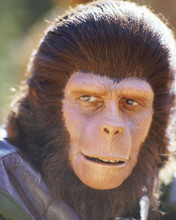 This is an image of 266136 Planet of the Apes Photograph & Poster
