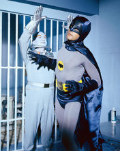 This is an image of 266758 Batman Photograph & Poster