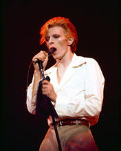 This is an image of 274286 David Bowie Photograph & Poster