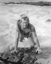 This is an image of 191212 Lloyd Bridges Photograph & Poster