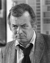 This is an image of 191380 David Janssen Photograph & Poster