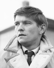 This is an image of 175011 Tom Courtenay Photograph & Poster