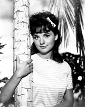 This is an image of 187465 Dawn Wells Photograph & Poster