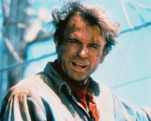This is an image of 214772 Sam Neill Photograph & Poster