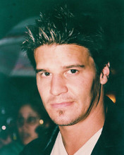 This is an image of 238726 David Boreanaz Photograph & Poster